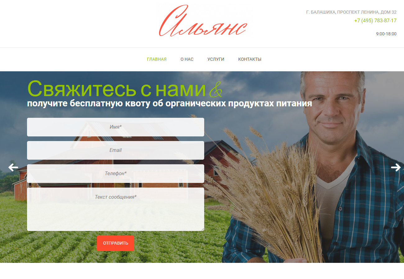 Портфолио - alliance-food.ru
